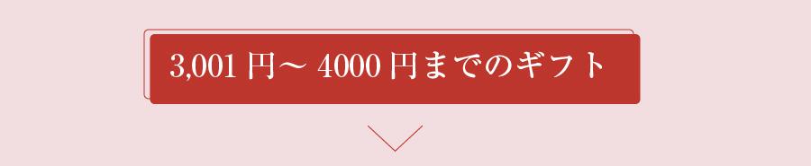 3,001円~4,000円までのぎふと