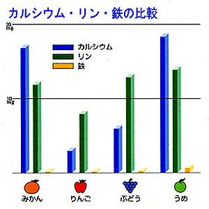 カルシウム・リン・鉄の比較